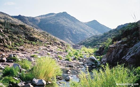 The creek above the Tonto Narrows